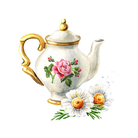 Teapot and Chamomile. Hand drawn watercolor illustration isolated on white background
