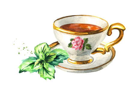 Cup of tea with mint. Hand drawn watercolor illustration isolated on white background