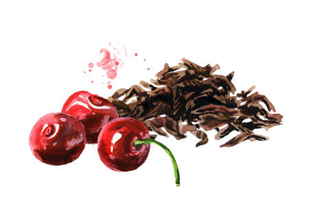 Heap of dry tea leaves and Cherry. Hand drawn watercolor illustration isolated on white background Standard-Bild