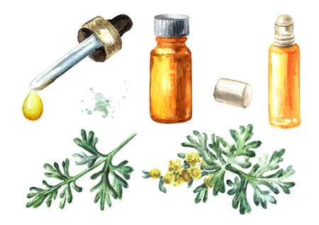 Sprigs, leaf and flower of medicinal plant wormwood and essential oil set, Hand drawn watercolor illustration, isolated on white background Stock fotó