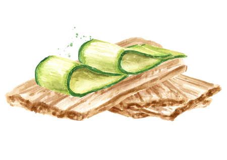 Crispbreads with cucumber. Watercolor hand drawn illustration, isolated on white background