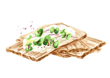 Crispbreads with Cream Cheese and fresh microgreens. Watercolor hand drawn illustration, isolated on white background