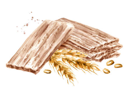 Spelt Crispbreads. Watercolor hand drawn illustration, isolated on white background