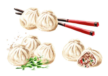 Traditional chinese dumplings Dim sum and chopsticks set. Hand drawn watercolor illustration, isolated on white background Zdjęcie Seryjne