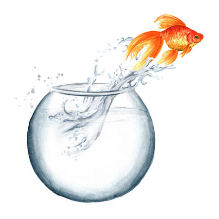 Goldfish. Gold fish jumping out of the water from the round glass bowl. Watercolor hand drawn illustration isolated on white background
