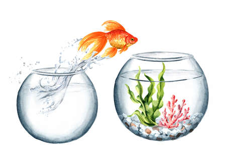 Goldfish. Gold fish jumping out of the water from the small round glass aquarium in the big one. Watercolor hand drawn illustration isolated on white background Zdjęcie Seryjne