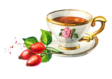 Cup of tea with Rosehip. Hand drawn watercolor illustration isolated on white background Reklamní fotografie