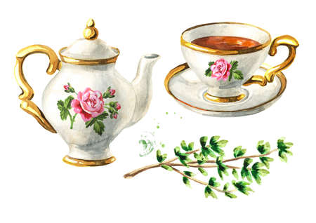 Teapot, cup of tea and Thyme set. Hand drawn watercolor illustration isolated on white background