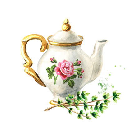 Teapot and Thyme. Hand drawn watercolor illustration isolated on white background Reklamní fotografie