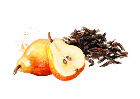 Heap of dry tea leaves and pear. Hand drawn watercolor illustration isolated on white background Reklamní fotografie