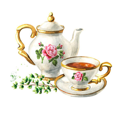 Teapot, cup of tea and Thyme. Hand drawn watercolor illustration isolated on white background