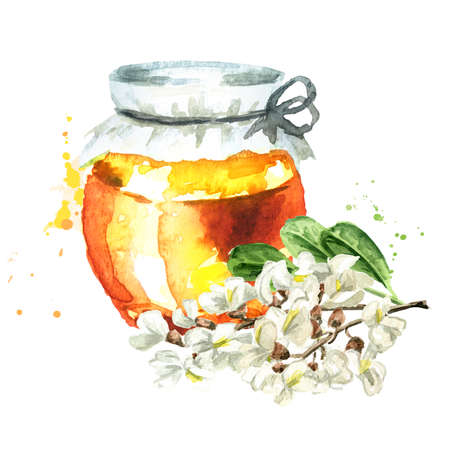 Honey from acacia or Sophora Japonica flowers. Hand drawn watercolor illustration isolated on white background