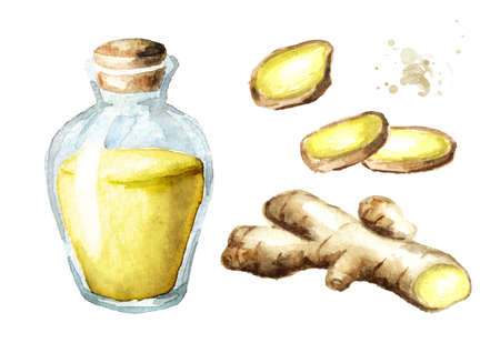 Ginger and essential oil set. Watercolor hand drawn illustration isolated on white background Banque d'images