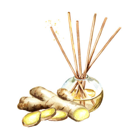 Ginger liquid in a glass bottle with sticks and a brunch. Freshener. Watercolor hand drawn illustration, isolated on white background Banque d'images