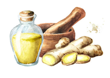 Medicinal plant ginger, Mortar and essential oil. Watercolor hand drawn illustration, isolated on white background