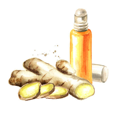 Ginger root and essential oil, Watercolor hand drawn illustration, isolated on white background