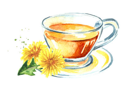 Cup of healthy herbal dandelion tea, Watercolor hand drawn illustration isolated on white background