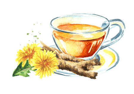 Cup of healthy herbal dandelion root tea, Watercolor hand drawn illustration isolated on white background