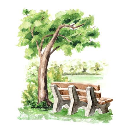 City bench under a tree in the park, Watercolor hand drawn illustration isolated on white background