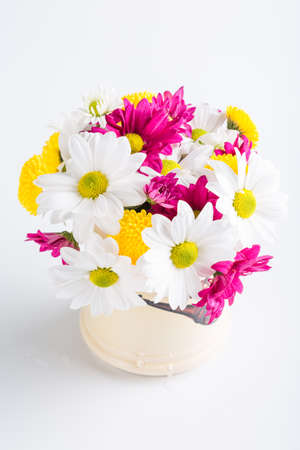 Spring bouquet of chrysanthemum flowers, floral background, Women's Day