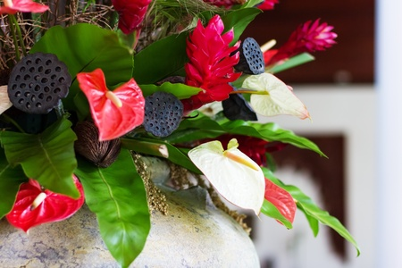 lotus seeds: Flower decor with anthurium and lotus seeds. Red and green colors. Selective focus,