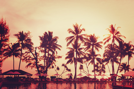 Tropical beach view. Palm tree and red sunset sky. Recreation area with sun umbrellas.