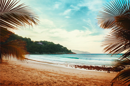 Tropical beach with palm trees and ocean waves. Vintage effect.