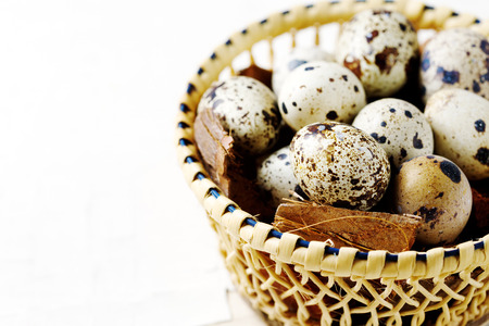 close up food: Food background with quail eggs close up over white. Space for text. Stock Photo
