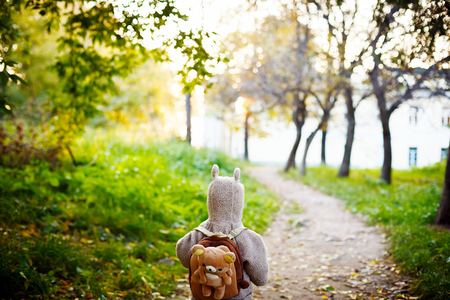 alone: Cute Little Kid in Funny Jacket with Animal Ears on Hood and Teddy Bear Backpack Travelling in the Park. View from the Back. Selective Focus, Shallow DOF. Space foe Text.