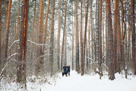 weather: Young Couple with a Dog Having Fun in Winter Forest on Holidays. General View. Copy Space for Text.