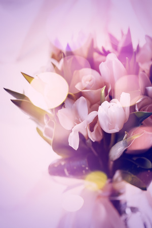 tulip: Pink Abstract Picture of Bouquet with White Roses and Tulips. Selective Focus, Shallow Depth of Field.