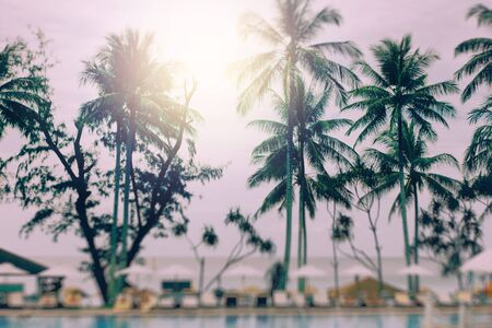 effect sunset: Blurred Background with Tilt-Shift Effect. Sunset at a Coastline with Palm Trees. Image Toned with Vintage Colors. Stock Photo
