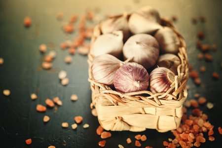 bulbet: Garlic Close Up in a Basket with Pink Himalayan Salt on Dark Background. Image Toned. Selective Focus. Copy Space for Text.