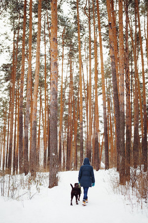 warm clothes: Woman in warm clothes playing with dog in winter forest. Active winter lifestyle.