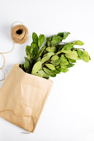 Branches of laurel bay leaves in paper bag on white background Stock Photo