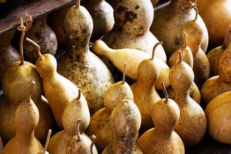 Dried pumpkins for traditional turkish handmade lamps Standard-Bild