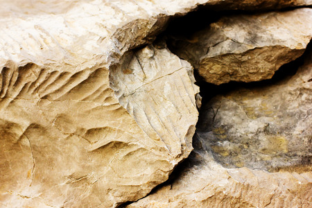 Stone texture, natural background, selective focus Standard-Bild