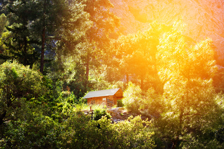 Wooden house in a forest, active vacations concept