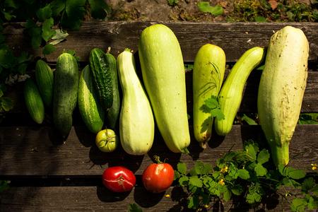 Fresh summer vegetable crop on wooden background outdoors, top view Standard-Bild