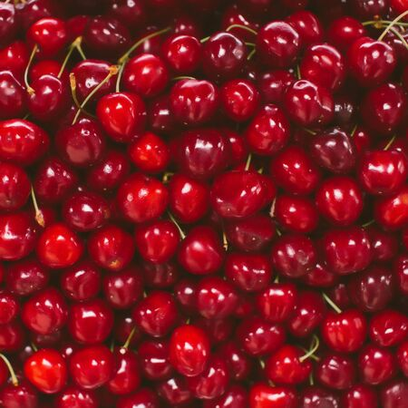 Sweet cherry fruit inclose-up on natural farmer market, fruit background