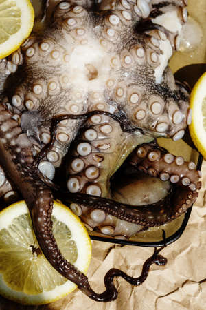 Seafood, raw octopus on a plate with lemons ready for preparing