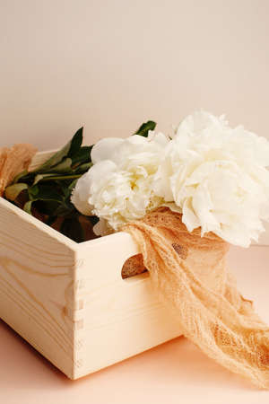 Flower composition with white peonies on peach color background