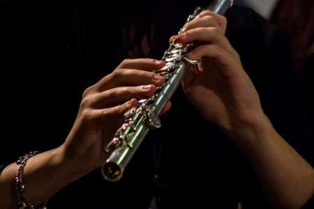 silver flute: Skilled Hands that make an enchanted flute.