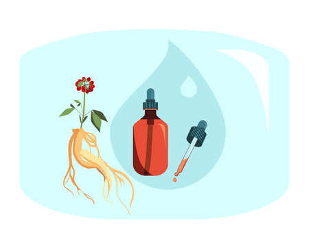 Red Ginseng root leaf and berries.  Drug prolongs life and youth.Plant extract for cosmetology. Elixir or anti-wrinkle serum.Powerful antioxidant.Vector illustration for traditional herbal medicine.