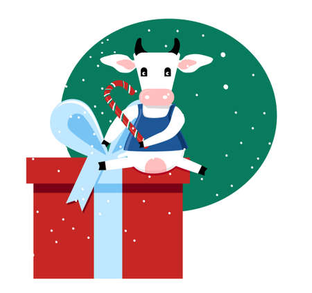 Cute cartoon cow in dress sitting on big present box and holding candy cane.Happy Chinese New Year 2021, Merry Christmas card.Seasonal sale,gift card or promo flyer template.Ox celebrating.Vector