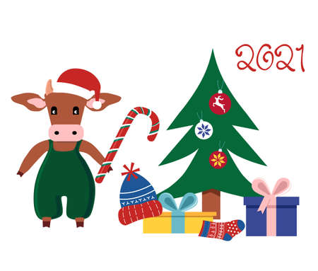 Cute cartoon Ox holding candy cane and put present boxes under Christmas tree.Happy Chinese New Year 2021 greetings.Seasonal sale,gift card or promo flyer template.Bull in santa hat.Family celebrating