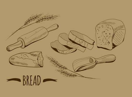 Bakery illustration in engraving sepia style. Sliced loaf, bitten of baguette. Equipment for bread cooking. Ears of wheat. Pastry retro monochrome sketch. Shovel for grain 矢量图像