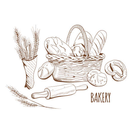 Bread and bakery in engraving style. Ears of wheat and a wicker basket with buns, french loaves, baguette. Menu decoration, farmers market. Equipment for cooking.