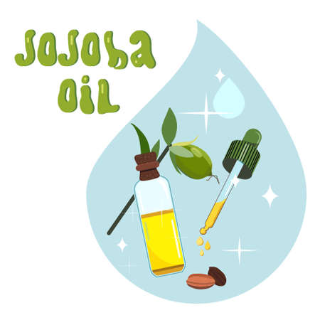 Jojoba oil,seeds,leaves.Plant extract for cosmetology.Spa products.Elixir or serum,lotion for hair and nails in a drop.Powerful antioxidant.Vector illustration for herbal medicine.Hand drawn lettering