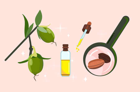 Jojoba oil,seeds and leaves with magnifier.Plant extract for cosmetology.Elixir or serum,lotion for hair and nails.Powerful antioxidant.Vector doodle illustration for herbal medicine.Spa products